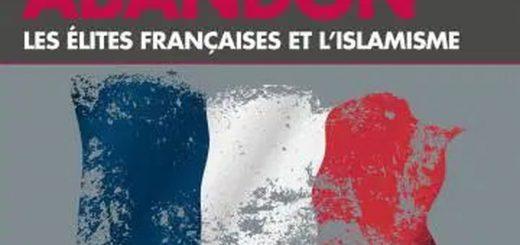 Le livre Le Grand abandon par Yves Mamou est une compilation impitoyable des mécanismes et d'une volonté pour laisser entrer l'immigration sans contrôle avec une islamisation de la France. Même si le livre me semble un peu biaisé sur certains points.